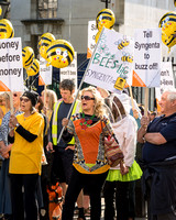 Bee Protest, London, UK